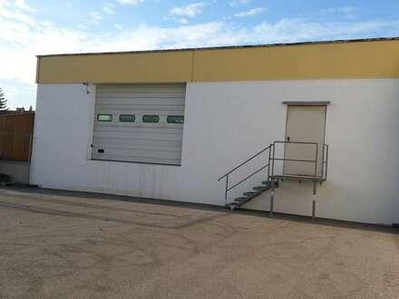 Miete - Betriebsobjekt/ Lager- und Produktionshallen in Traiskirchen mit großer Freifläche
