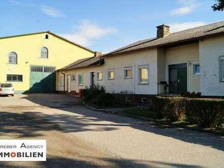 Megagroßer landwirtschaftlicher Viehbetrieb, 250 qm Wohnraum, 1.675 qm Stallungen, 17.700 qm Grund