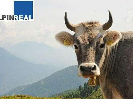 Pension/Landgasthaus mit kompletter Landwirtschaft