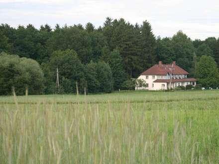 Schöne Wohnung im Grünen zu verkaufen!
