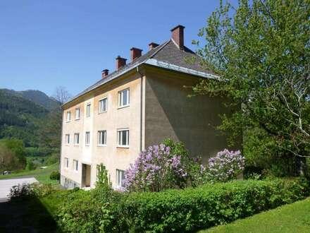 Dreifamilien-Schnäppchenhaus! Leistbares, großes Domizil im Eigentum! Geeignet für Pension, Hotel oder Wohngemeinschaften!…