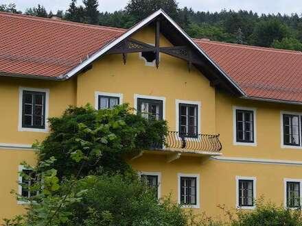 Große, helle Wohnung in renovierter Villa - Top Lage, Seenähe - rundherum Garten - Provisionsfrei!