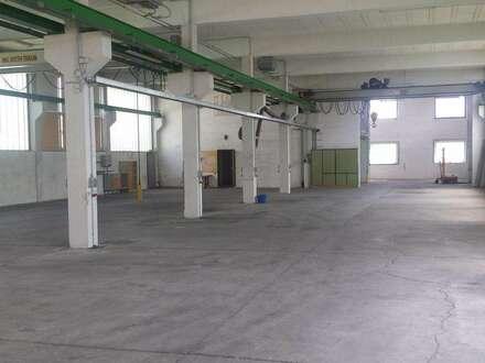 2 Hallen,gr.Freifläche,Lager,Büros,Wohnungen
