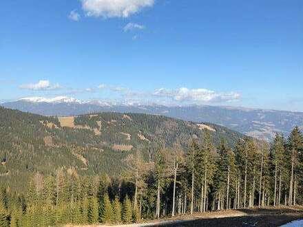 Traumhaftes Almchalet in Massivholzbauweise mit großzügiger Sonnenterrasse am Klippitztörl