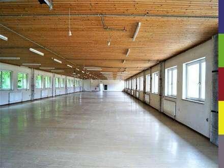 Produktionshalle mit Lagerfläche und Bürotrakt zum Mieten