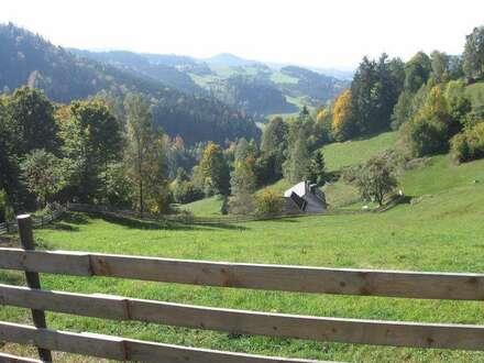 Einfamilienhaus (Ehemaliges Bauernhaus) - Inklusive 8 ha (80,000m2) Garten, Wiesen und Wald
