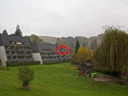4-Zimmer-Wohnung (102,42m²) mit Loggia und Blick ins Grüne in ruhiger Lage!