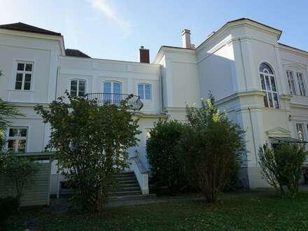 Zentrumsnahe Villa in Baden bei Wien gewerblich zu vermieten.