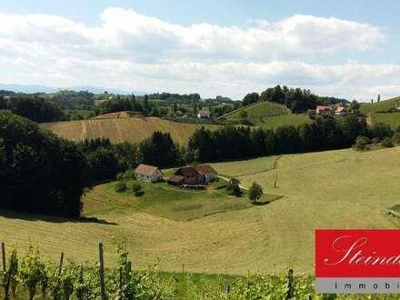 Teilrenovierte Landwirtschaft in Alleinlage mit Reitplatz im Bereich Leutschach zu verkaufen