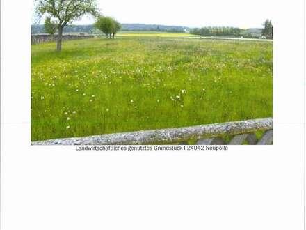 Veräußerung des landwirtschaftlich genutzten Grundstückes Nr. 1015/1, EZ 478, KG 24042 Neupölla
