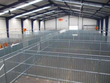 Lagerabteile ab € 2,50/m² netto zu vermieten!