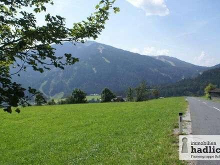 Grundstück mit ca. 8.700 m² in Mühlbach am Hochkönig zu verkaufen!