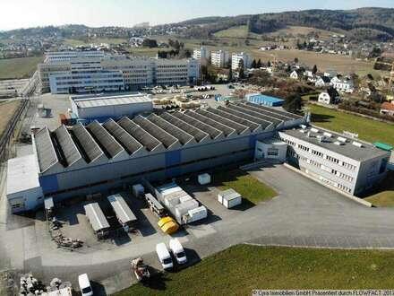Moderne Produktions-/ Lagerhalle in Leonding