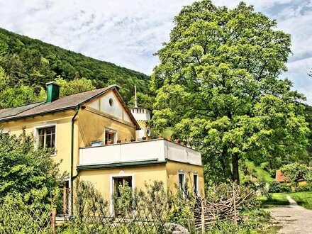 Alternativer Lebensraum am Niederhof. Eigene Montesorischule am Grund. Ideal für Jungfamilien!