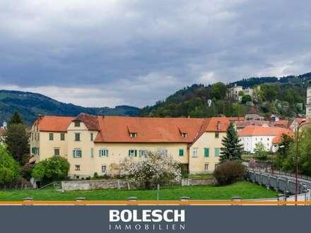 Schloss Bayerhofen - Historische Mauern in großzügigem Park