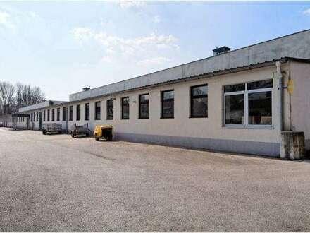 Lagerhalle VH A2 im Industriepark Weigelsdorf