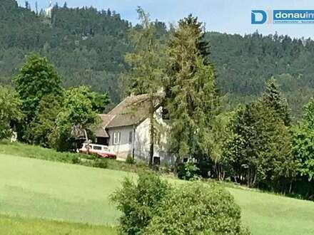 Teilrenoviertes Einfamilienhaus in Ortsrandlage bei Großpertholz