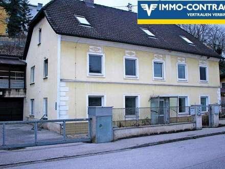 Wohnen und Arbeiten unter einem Dach oder 4 Wohneinheiten