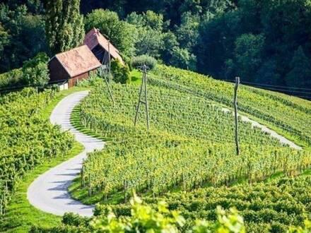 Tolles Hotelprojekt in einzigartiger Lage! Direkt an der südsteirischen Weinstrasse!