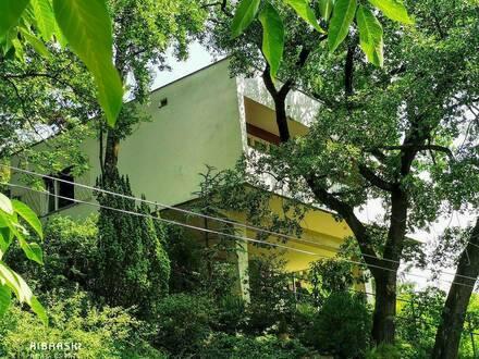 Architektenhaus mit spektakulärem Ausblick! Entdecken Sie eine außergewöhnliche Liegenschaft in Badener Bestlage.