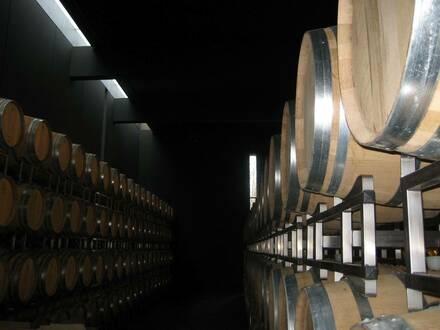 Lagerhalle mit Gewölbekeller und Weingarten