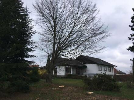 Großzügiges Einfamilienhaus mit großem Garten im Waldviertel zu vermieten