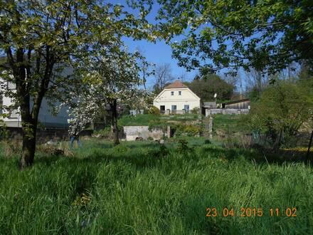 Haus in Ringelsdorf zu Verkaufen