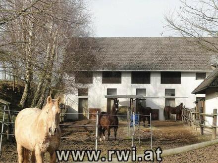 Landsitz mit Pferdehaltung