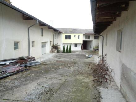 Bauernhaus für Grossfamilie mit 2 Lagerhallen!