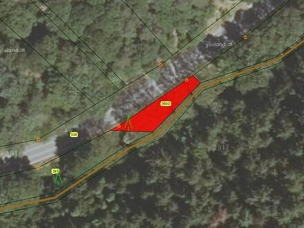Verkauf Waldgrundstück in der KG Senftenbergeramt