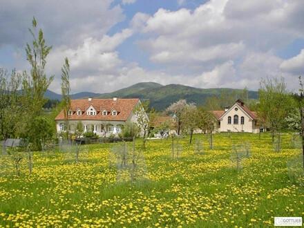 Liebevoll saniertes Anwesen und Seminarzentrum aus dem 16. und 19. Jahrhundert in der Südoststeiermark