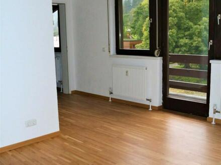 neu sanierte 3-Zi.-DG-Wohnung mit Balkon
