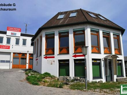 !!Industriegelände Donnerskirchen! Lager, Werkstatt, Büro, Geschäft! Ab 25€ Netto/Monat! 10m² - 1500m²! 10 min nach Eisenstadt!!