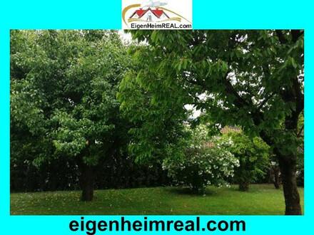 Schmuckes Einfamilienhaus mit Garten