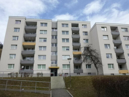 Generalsanierte Siedlung - Familien- und Singlewohn(t)räume mit herrlichem Ausblick auf das Murufer - Provisionsfrei!