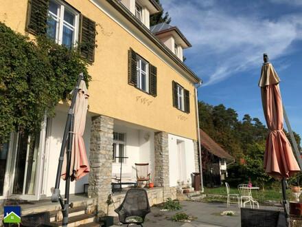 Villa mit Biotop und eigener Quelle!