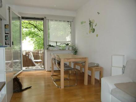 PROVISIONSFREIE, GERÄUMIGE 72 m² IN DER GABELSBERGERSTRASSE (50/EG/links)! 3 ZIMMER MIT LOGGIA! NEUWERTIG! WG-TAUGLICH!