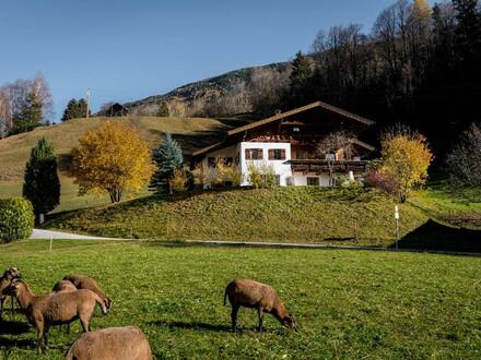 Luxus Landhaus Chalet mit Almhütten Charakter in den Pitztaler Bergen zum Mieten