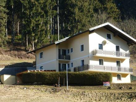 Mehrfamilienhaus mit verschiedenen Nutzungsmöglichkeiten
