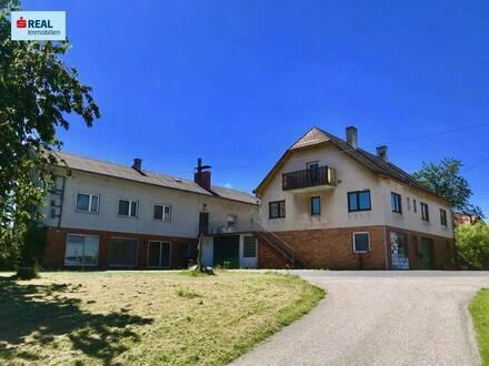Zwei Einfamilienhäuser mit Geschäftslokal, einer Werkstatt und Lagerhallen - RENOVIERUNG ERFORDERLICH!!
