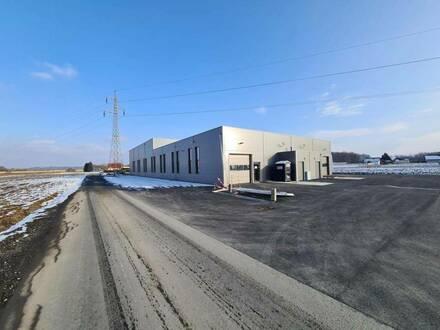 Beheizte Lagerhalle mit ca. 237 m² zu vermieten