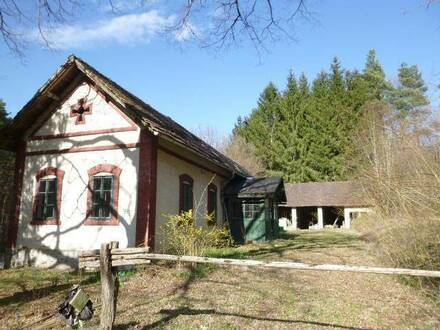 Für handwerklich geschickte Naturliebhaber, Forsthaus mit Nebengebäude und viel Potential