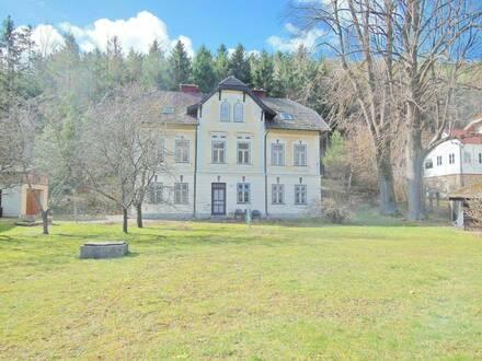 Single Wohnung in Weißenbach an der Triestig!