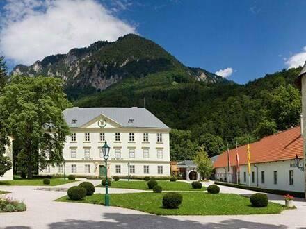 3 Reihenhäuser + 4 Zimmer + Terrasse + Garten + KFZ-Abstellplatz in Reichenau an der Rax!