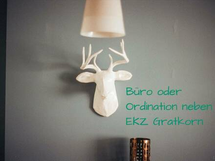 Büro oder Ordination neben EKZ in Gratkorn