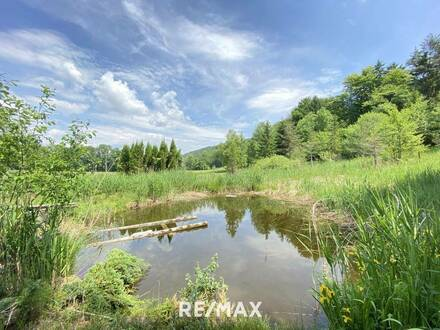 Landwirtschaftliche Grundstücke mit Teich und Waldfläche