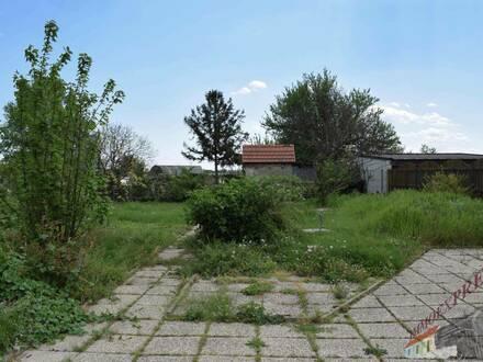 Einfamilienhaus in Ruhelage - nähe Neusiedler See !