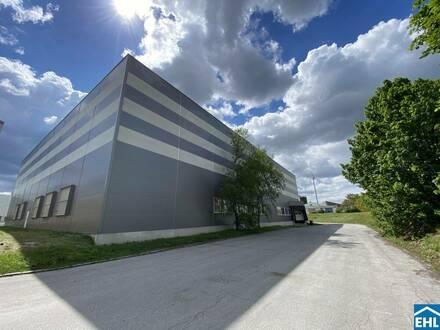 Büro-, Lager und Produktionsflächen im Industriezentrum Wolkersdorf zu mieten!
