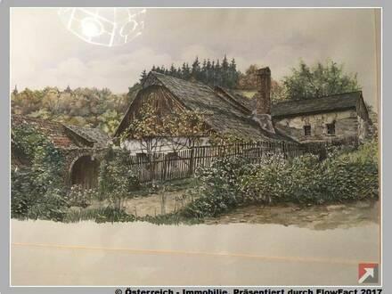 Wachau - Bauernhof mit 63 ha bei Spitz - 1748