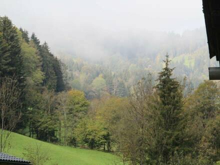 Familienhaus oder Generationenhaus mit Potenzial am Waldrand